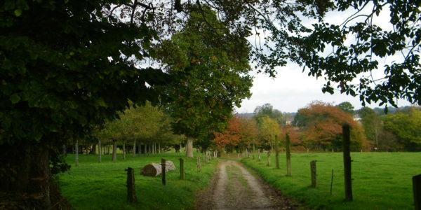 Chemin du Vieux Moulin